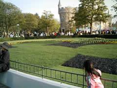 プラザの芝生
